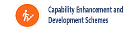 Capability Enhancement Scheme
